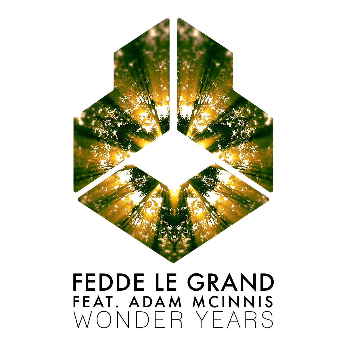FEDDE LE GRAND FEAT. ADAM MCINNIS – WONDER YEARS [OUT NOW ON DARKLIGHT RECORDINGS]
