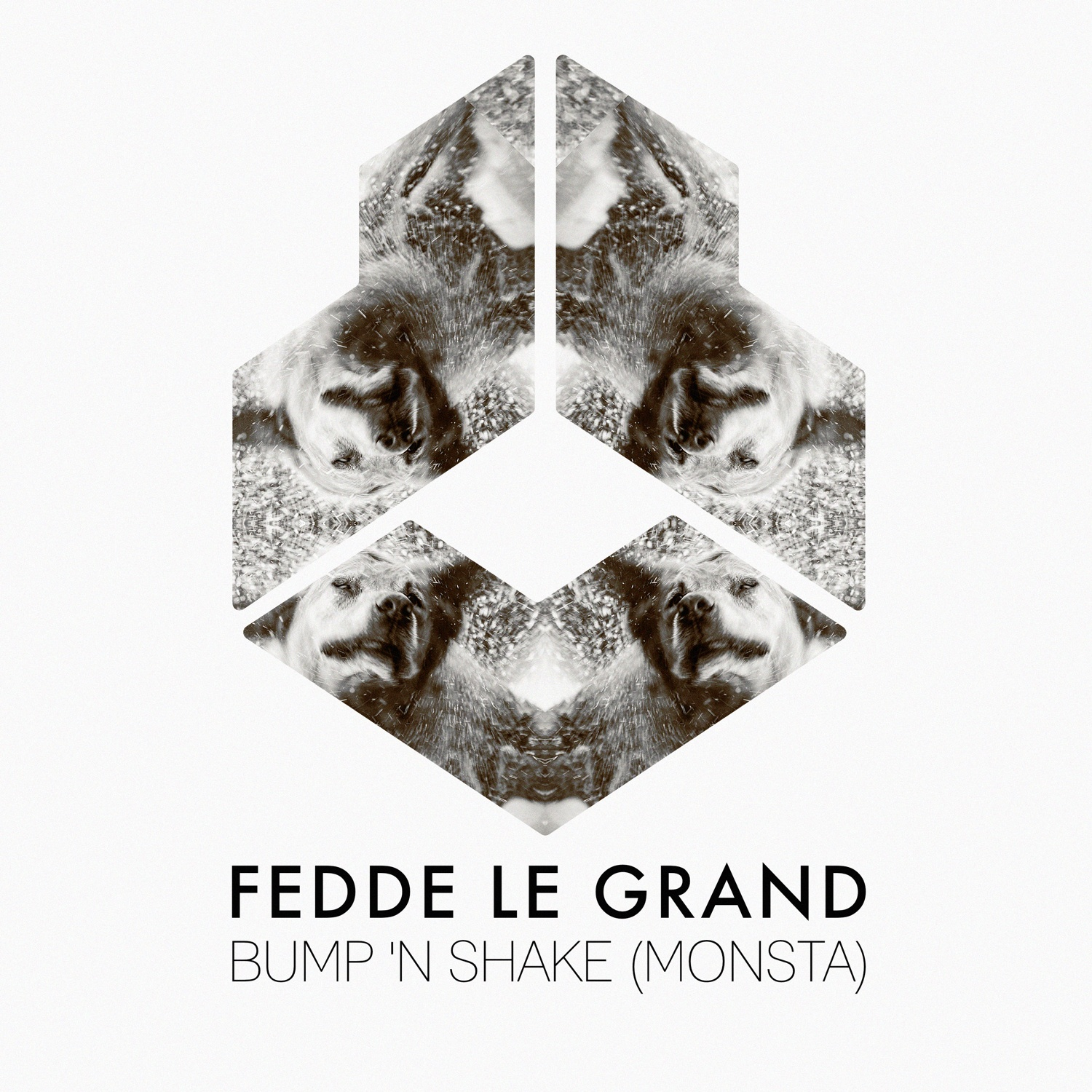 FEDDE LE GRAND - BUMP 'N SHAKE [OUT VIA DARKLIGHT RECORDINGS]