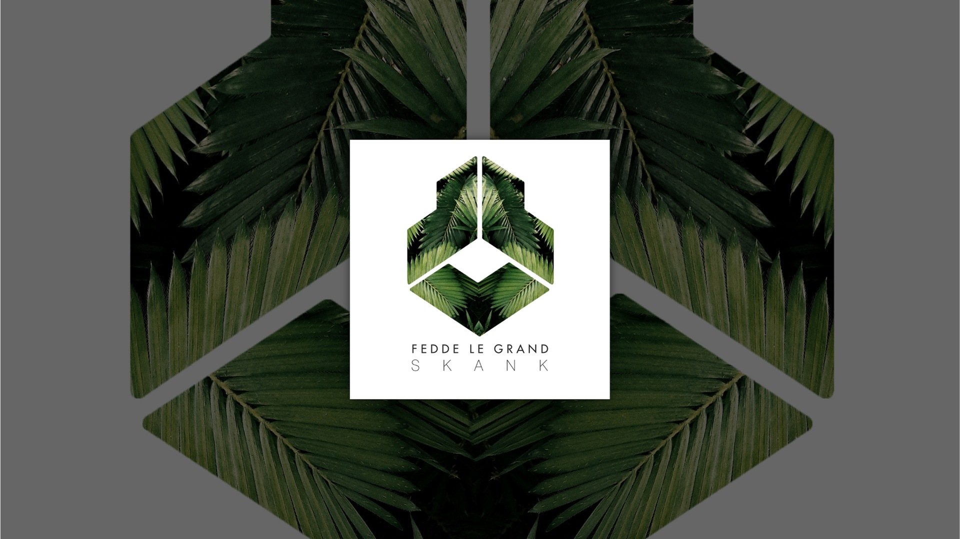 OUT NOW: FEDDE LE GRAND - SKANK